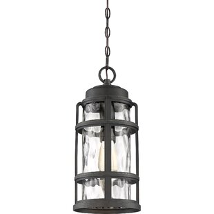 Devitt 1-Light Outdoor Hanging Lantern By Breakwater Bay Outdoor Lighting