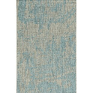 Harms Teal Indoor/Outdoor Area Rug