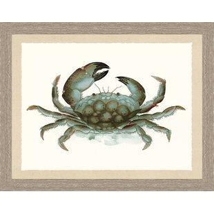 Crab Print Wall Art Wayfair