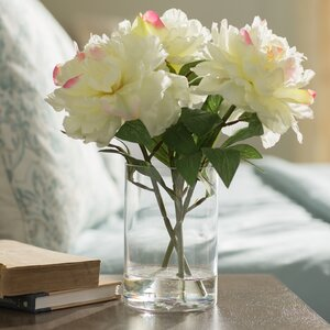 Soft Cream Peonies