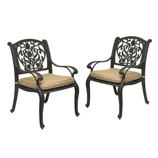 Camptown Patio Dining Chair with Cushion (Set of 2)
