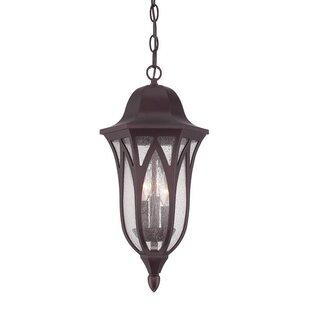 Fleur De Lis Living Besaw 3-Light Hanging Lantern