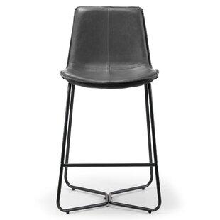 Fabulous Burke Counter Bar Stool Set Of 2 Machost Co Dining Chair Design Ideas Machostcouk