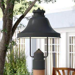 Beachcrest Home Carpenter 1-Light Lantern Head
