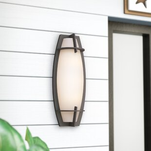 Looking for Sievert 1-Light Outdoor Sconce By Brayden Studio