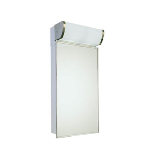 Dash Surface Mount Framed Medicine Cabinet with 3 Adjustable Shelves and LED Lighting