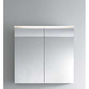 Delos Surface Mount Frameless Medicine Cabinet with 2 Shelves and LED Lighting