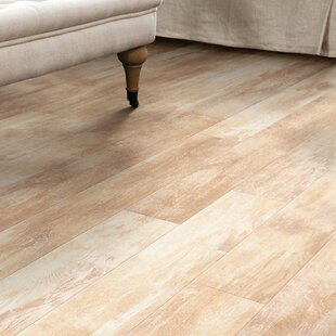 Momentous 5 x 48 x 8 mm Laminate Flooring