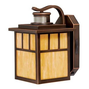 Affordable Joelle 1-Light Glass Shaded Outdoor Wall Lantern By Loon Peak