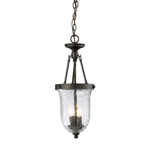 Alcott Hill Hedden 3-Light Outdoor Pendant