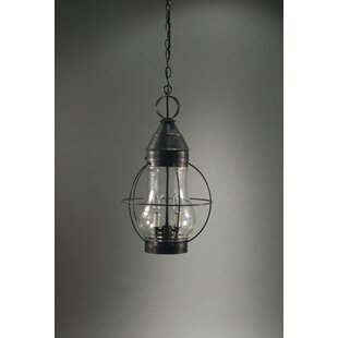 Gary 2-Light Outdoor Hanging Lantern