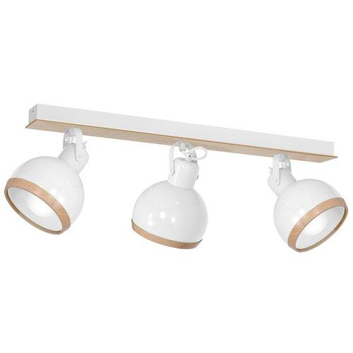 Stevan 3-Light Ceiling Spotlight Corrigan Studio Fixture Fin