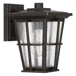 Eastvale 1-Light Outdoor Wall Lantern