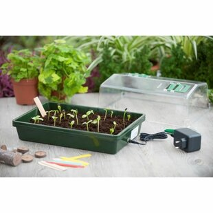 Taytum Mini Hydroponics Greenhouse By Sol 72 Outdoor