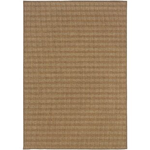 Middleburg Brown Indoor/Outdoor Area Rug