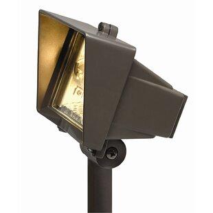 Buying 1-Light Flood Light By Hinkley Lighting