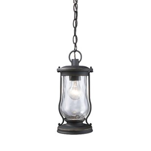 Crutchfield 1-Light Outdoor Hanging Lantern