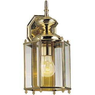 Alcott Hill Triplehorn 1-Light Traditional Clear Wall Lantern