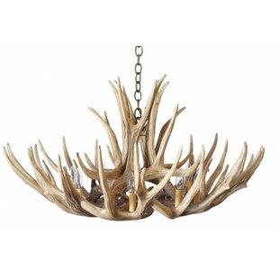 Millwood Pines Agnes Mule/Deer 8-Light Novelty Chandelier