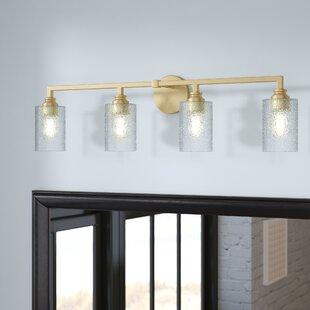 Mercer41 Tera 4-Light Vanity Light with Iced Glass