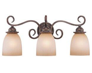 Fleur De Lis Living Brosnan 3-Light Vanity Light
