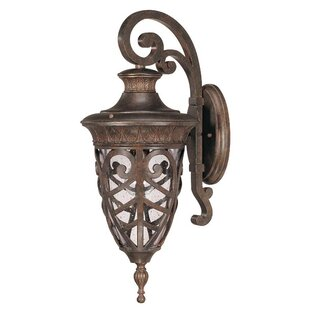 Inexpensive Dunamoy 1-Light Outdoor Wall Lantern By Astoria Grand