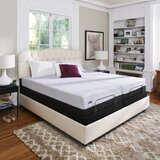 Sealy Conform™ Performance 12.5 Plush Memory Foam Mattress and Box Spring by Sealy