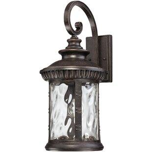 Astoria Grand Baxter 1-Light Outdoor Wall Lantern