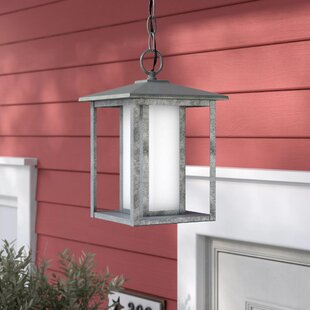 Hayner 1-Light Outdoor Hanging Lantern By Three Posts Outdoor Lighting