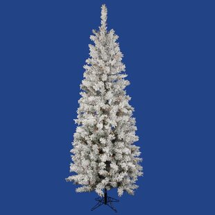 Blue And White Christmas Tree Lights