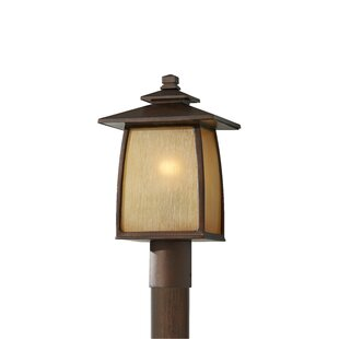 Reviews Chesterhill Outdoor 1-Light Lantern Head By Darby Home Co