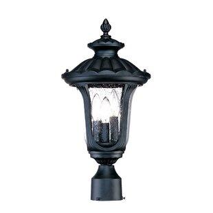 Charlton Home Princeton Outdoor 3-Light Lantern Head