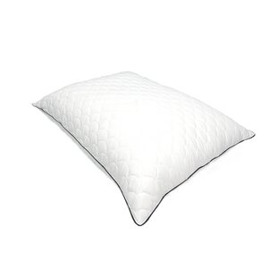 Willem Dream Plush Soft Polyester/Polyfill Pillow