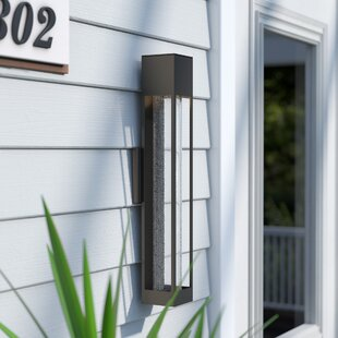 Brayden Studio Reider 1-Light Outdoor Sconce