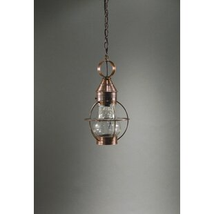 Gary 1-Light Outdoor Hanging Lantern