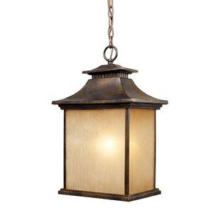 Loon Peak Lynwood 1-Light Outdoor Hanging Lantern