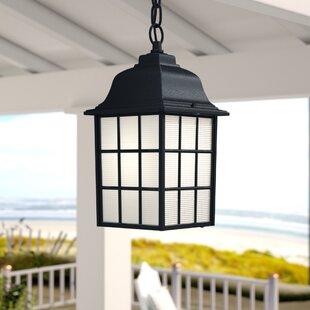 Affordable Belfield 1-Light Outdoor Hanging Lantern By Breakwater Bay