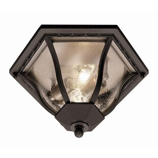 August Grove Luciano 2-Light Outdoor Flush Mount