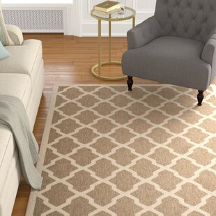 Larson Indoor/Outdoor Brown Indoor Area Rug