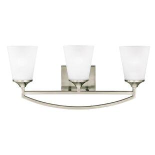 Darby Home Co Elkton 3-Light Vanity Light