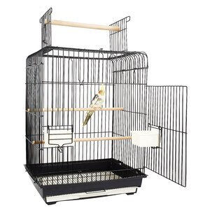 Phoenix Cage by FUN