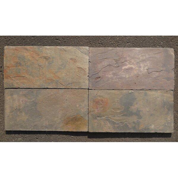 Stone Tile Shoppe Inc Multi Color Classic Natural Cleft Face Back 8x16 Slate Field Tile Wayfair