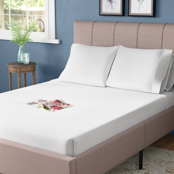 Egyptian Cotton Percale Woven Sheet Wayfair,Best Color Paint For Bedroom 2020