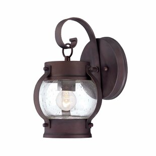 Ragland Outdoor Wall Lantern