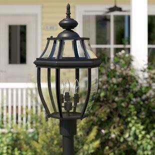 Dunmore 3-Light Lantern Head by Alcott Hill