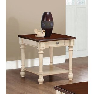 Make Your Dream Living Room With Highland Dunes Sabina Turtle End Table