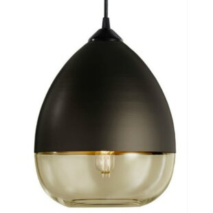 George Oliver Raphael 1-Light Teardrop Pe..