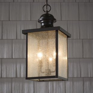 Darby Home Co Anguiano Outdoor Hanging Lantern