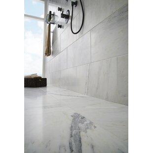 Arabescato Carrara 12 x 24 Marble Field Tile in White