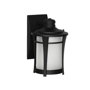 Read Reviews Laronda 1-Light Outdoor Wall Lantern By Red Barrel Studio
